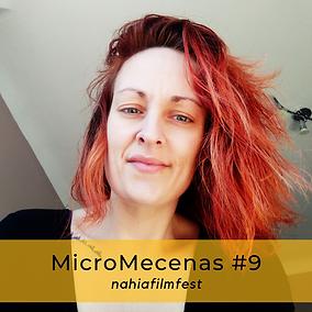 MicroMecenas #9.png