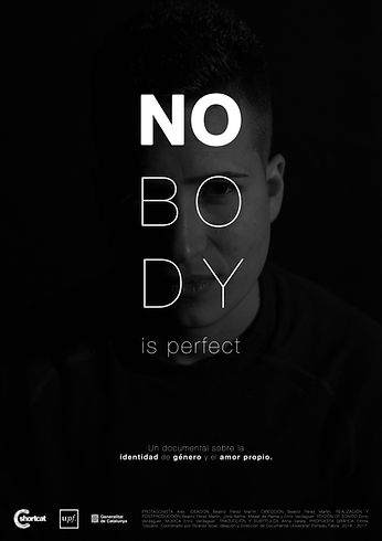 46-poster_Nobody is perfect.jpg