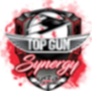 TopGunSynergy.png