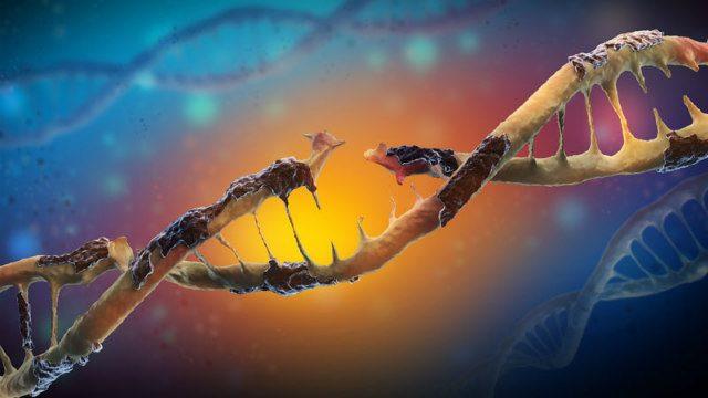 Daño en ADN