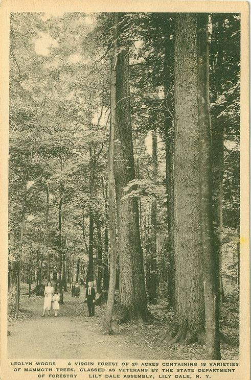 Leolyn-Woods-1925