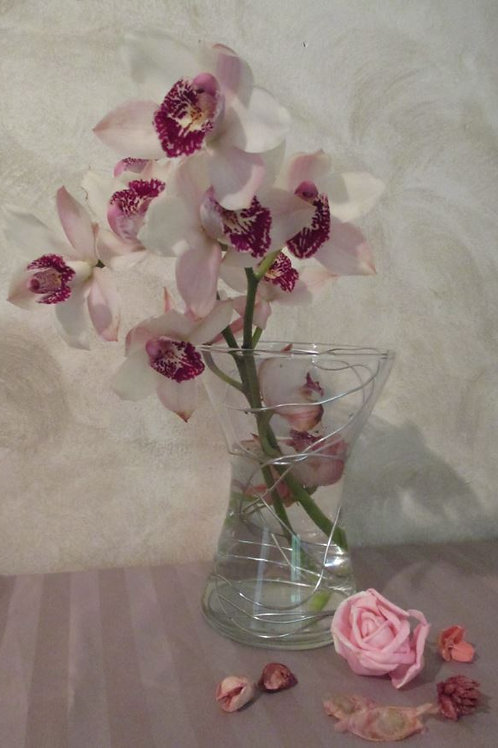 COMPO 31 ROYAL ORCHIDEE
