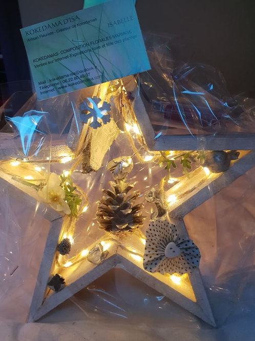 Etoile de Noël lumineuse à poser couleur blanc  N°2