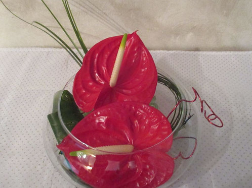 COMPO 11 ANTHURIUMS FLOTTANTS