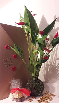 coffre st valentin anthu rouge.JPG