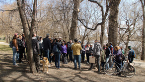 Water and Winnipeg: Learn more about our spring walk topics