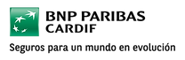 logo y colores bnp cs6s-02.png