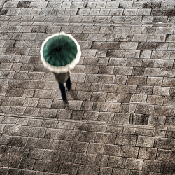 18012014-_DSC6002_Snapseed-2.png