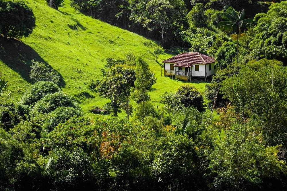 Casinha na Serra do Brigadeiro
