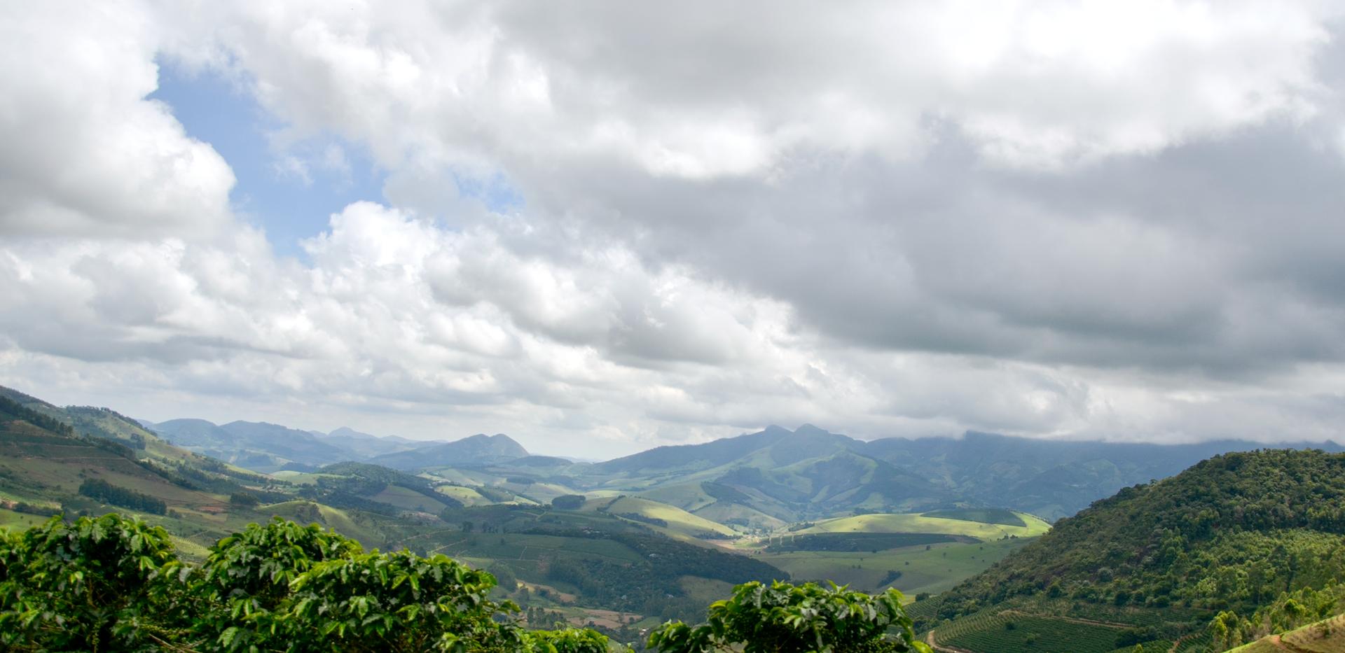 Café Especial de Montanha do Edimar Miranda na Serra do Brigadeiro