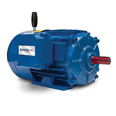 Elektrim-brake motor 04032018.jpg