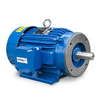 elektrim motor 04032018.jpg
