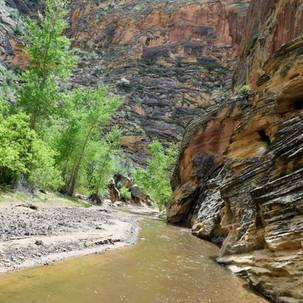 Escalante River Canyon Walk