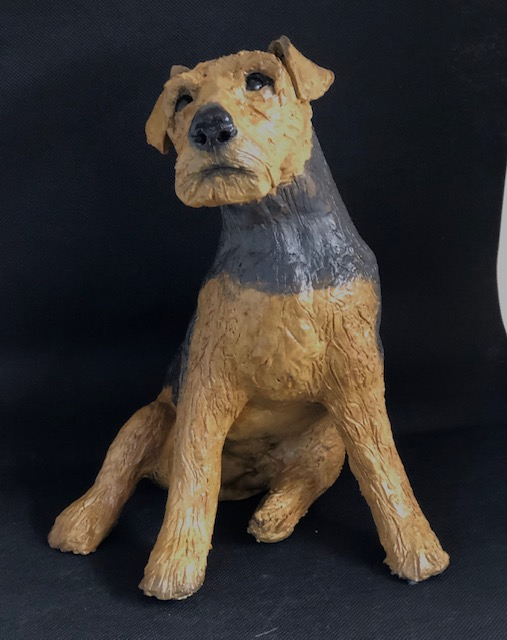 Welsh Terrier 2