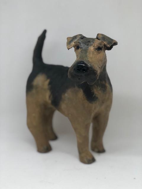 Terrier 1