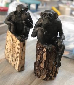 Chimp 10