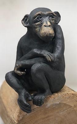 Chimp 2.jpg