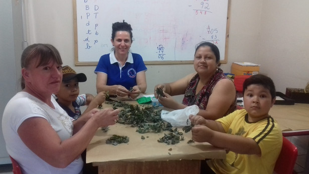 JEPP: Projeto Chás e Cheiros é desenvolvido na Escola Bento com a Prof. Leni