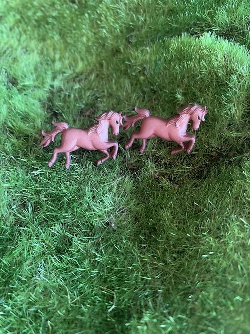 Horse 🐴 love