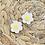 Thumbnail: Daisies Earrings