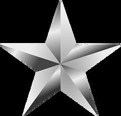 Full Service Silver