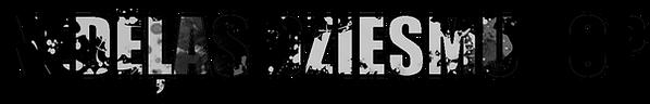 N.DZ.TOP_2.png