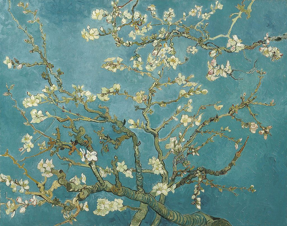 Vincent Van Gogh Blossoming Almond Tree, 1890