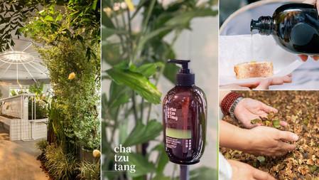 茶籽堂植萃配方、包裝全新升級!期間限定特展「大地癒所」,五感體驗感受以南澳為藍圖的大自然療癒感!