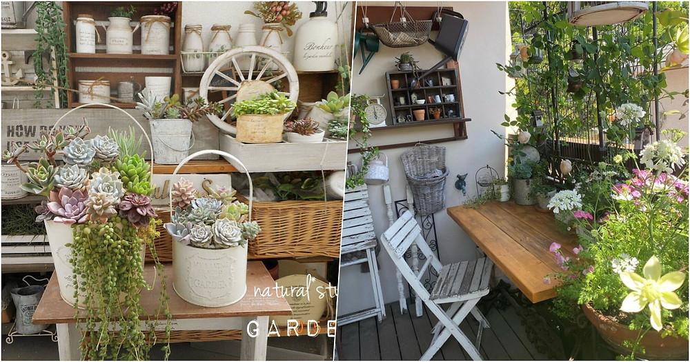 選擇花植裝飾盆栽或永生花