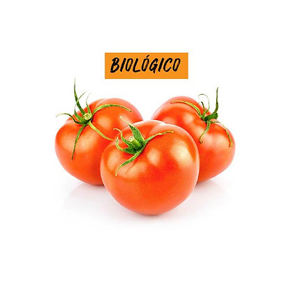 Tomate redondo BIO 1Kg