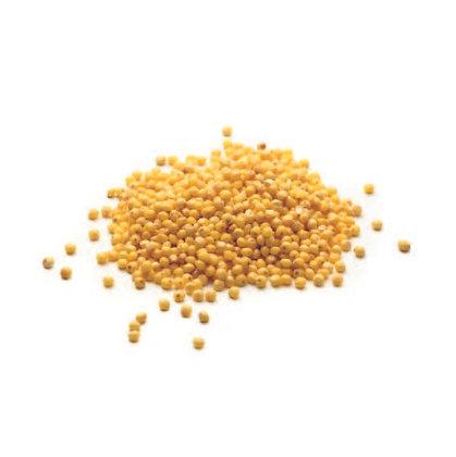 Milho painço/Millet Bio Seara 500gr