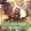 Thumbnail: Bolachas Vegan de Canela 400G