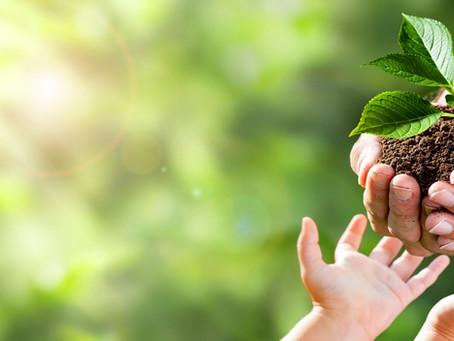 Nachhaltigkeitsbestrebungen der DAX Unternehmen greifen zu kurz und gefährden damit ihre Zukunft