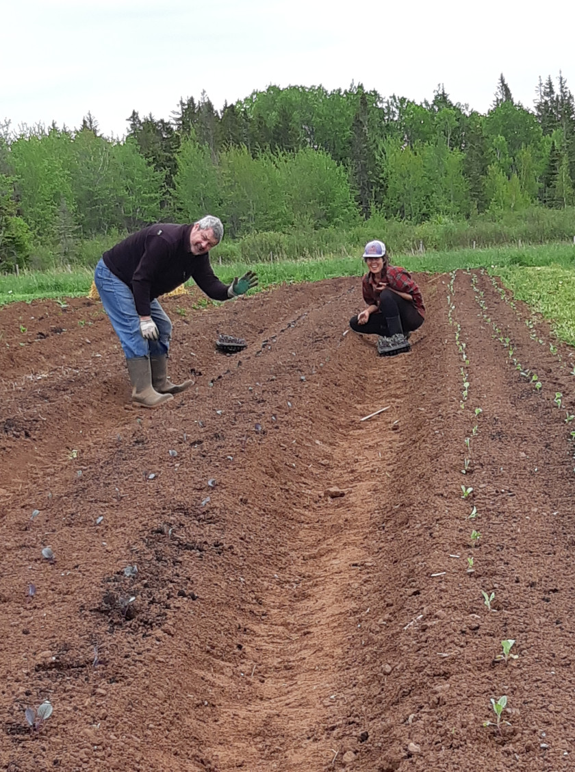 My dad!  Our best farm volunteer (along with my mom and Jet's mom)