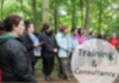 Training & Consultancy(1).png
