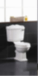 wall hung toilet, wall mounted toilet, in wall toilet