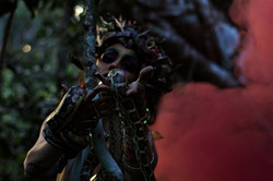 Medusa daze miami director