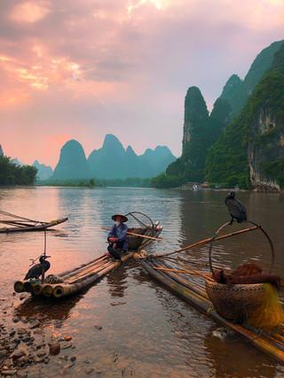 Cormorant Fishing, Xingping, China