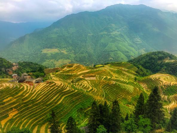 Longji Terraces, Guilin