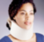 neck collar.png