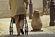 walker rollator.jpg