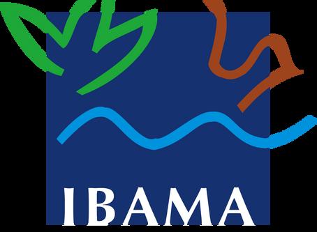 Ibama implementa melhorias no sistema DOF