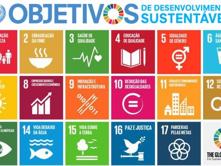 Conheça os novos 17 Objetivos de Desenvolvimento Sustentável da ONU