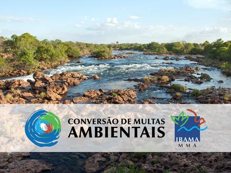 Ibama publica Instrução Normativa sobre conversão de multas ambientais
