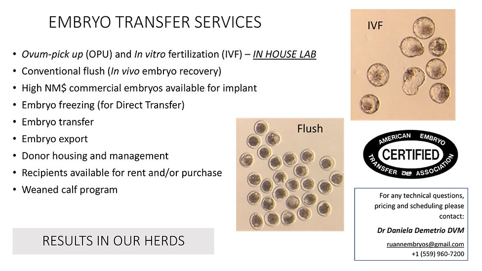 Embryo transfer services.jpg