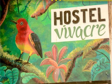 Redesign do site Vivacre hostel