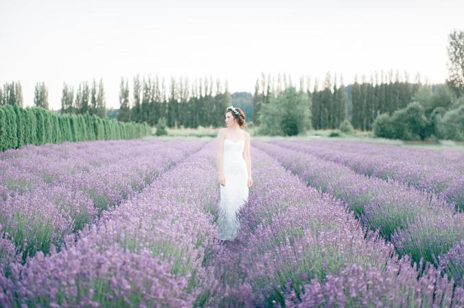 LavenderStyledShoot_0061 lower res.jpg