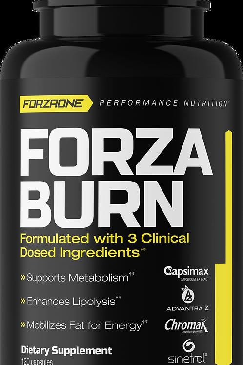 Forza Burn