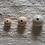 Thumbnail: Wooden Beads 20mm/25mm/30mm