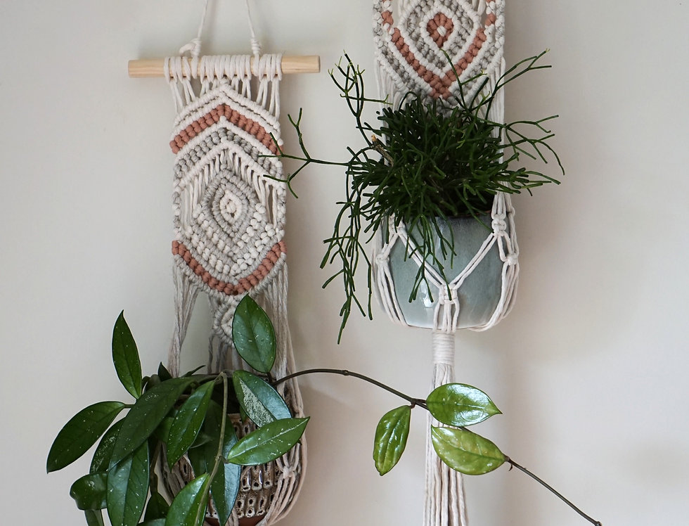 Patience Plant Hangers #1 and #2